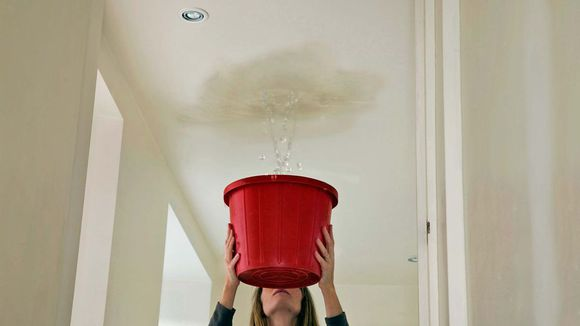 куда звонить если течет с потолка